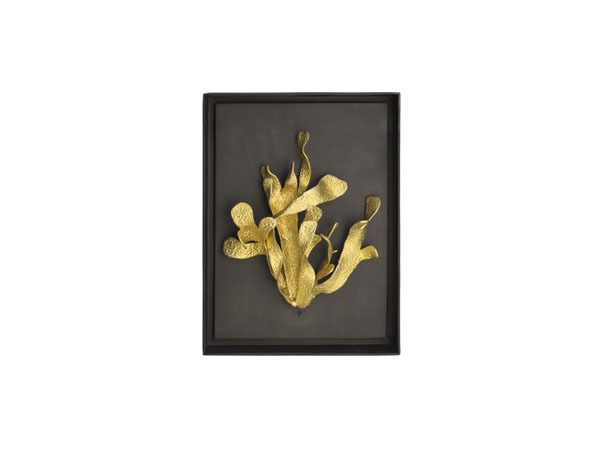 Kelp shadow box from Michael Aram