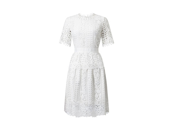 Short sleeve lace dress from James Lakeland