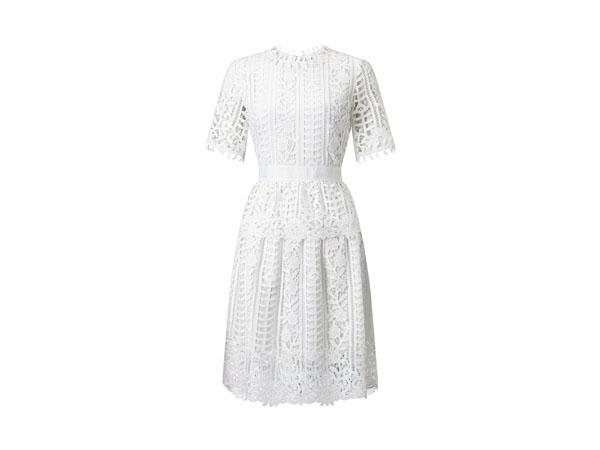 Short sleeve lace dress from James Lakeland